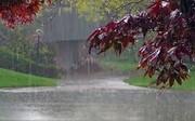 آسمان البرز از عصر جمعه  ۱۵ آذر بارانی میشود