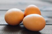 پشت پرده گرانی تخممرغ