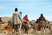 پرداخت ۲۱ میلیارد تومان تسهیلات به عشایر ایلام