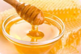 تولید ۴۵۷ تن عسل درشهرستان ساری