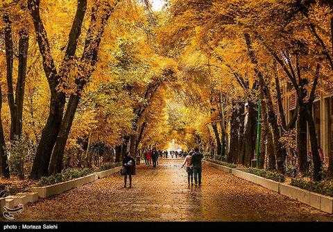 پاییز چهار باغ