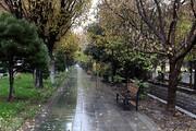 ملودی باران در قلب پایتخت