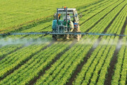 ۷۲ درصد طرحهای اشتغال جهاد کشاورزی چهارمحال و بختیاری اجرایی شد