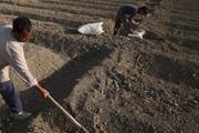 ایران؛ رتبه اول فرسایش خاک در جهان