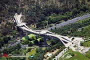 اجرای طرح ایمنسازی پل طبیعت تا پایان ۹۸