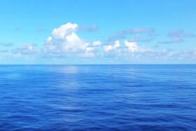کاهش بیسابقه اکسیژن اقیانوسها | کوسه، ماهی تن و نیزهماهیها در معرض خطر