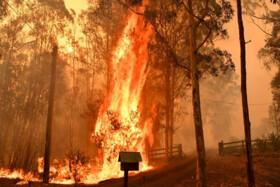 تلاش گسترده برای مهار آتشسوزیهای استرالیا