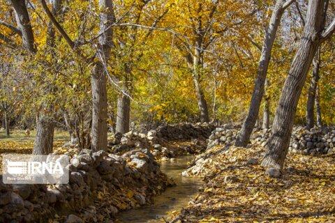 طبیعت پاییزی روستای حصار