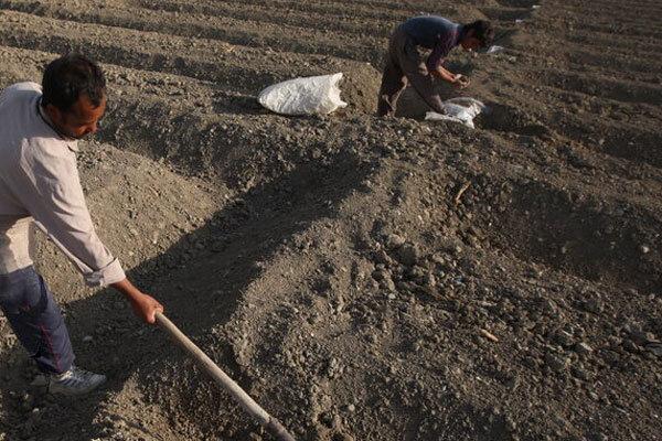 فرسایش خاک