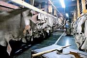 واحدهای چرمسازی آذربایجانشرقی در آستانه تعطیلی