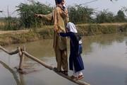 ماجرای عکس پل چوبی منتشر شده در فضای مجازی