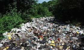مرور نظریههای مطرح در حوزه تضاد و تخاصم بشر با محیط زیست | آشنایی با هوش محیط زیستی