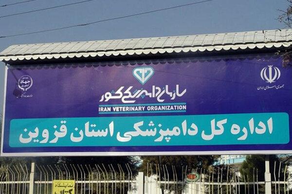 دامپزشکی استان قزوین