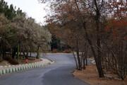 تصویر | چشمانداز پاییزی پارک جنگلی ارومیه