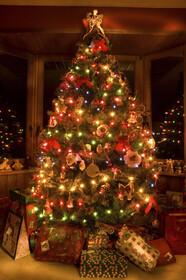 تصاویر گرانترین درختهای کریسمس جهان | از درختهای طلایی تا گویهای سوواروسکی