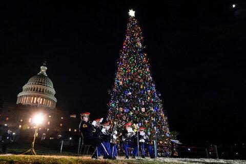 درخت کریسمس در واشنگتن