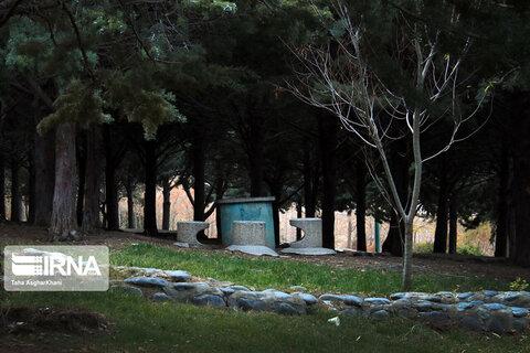 چشمانداز پاییزی پارک جنگلی ارومیه