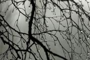 آسمان تهران امشب بارانی میشود