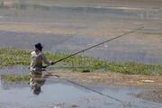 تصویر | ماهی، تور، قلاب