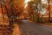 تصویر | خودنمایی طبیعت پاییزی