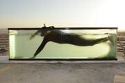 گفتوگو با مردی که در آکواریوم شنا کرد