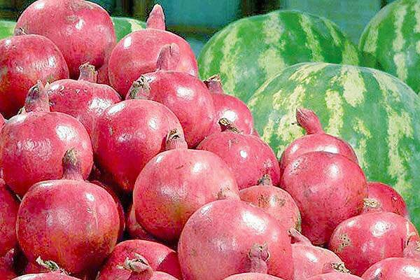 میوه شب یلدا تامین است | انار و هندوانه گران نمیشود