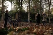سمفونی برگهای پاییزی در میدان مشق