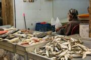 راهاندازی مراکز عرضه ماهی باقیمت مناسب در سطح شهر بندرعباس