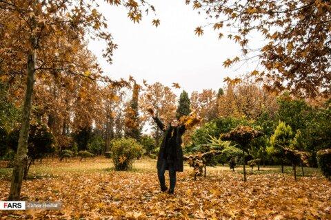 زیبایی های پاییز در باغ ارم