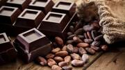 مواد خوراکی موثر در تقویت سوختوساز بدن