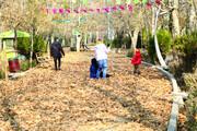 پرسه یلدا در گذرهای پاییزی