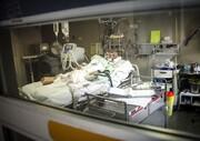تعداد جدید تلفات آنفلوآنزا | آمار عجیب بستری بیماران تنفسی