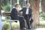 توانمندسازی سالمندان از اولویت های فرمانداری تهران است