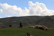 اجرای طرح کاداستر در اراضی کرمانشاه