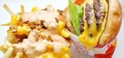 کدام خوراکی از تاثیرات منفی رژیم پرچرب میکاهد؟