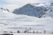 حسرت دشت اردبیل برای برف