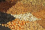افزایش تولید محصول در بزرگترین کارخانه خوراک آبزیان خاورمیانه