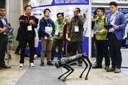 فیلم | «ایلینگو» سگ رباتی چینی