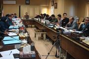 رفع تداخل بیش از ۱۱ هزار هکتار از اراضی کردستان