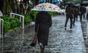 باران ِتهران آلوده است؟