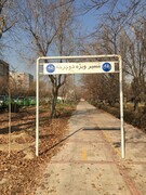 راه اندازی مسیر دوچرخه سواری در منطقه۱۹