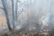 سه هکتار از جنگل سوادکوه در آتش سوخت
