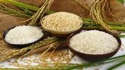 دومین کشور صادرکننده برنج در تنگنا
