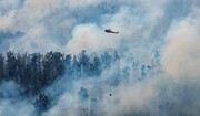 عکس روز | آبی بر آتش استرالیا
