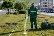 اخراج گسترده کارگران نگهداری فضای سبز تکذیب شد