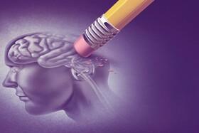 امکان تشخیص زودهنگام آلزایمر   رژیم غذایی پیشنهادی برای جلوگیری از آلزایمر