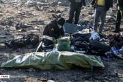 ۱۴۷ سرنشین هواپیمای سانحهدیدهایرانی بودند