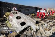 یک نفر از خانواده همشهری در سانحه سقوط هواپیما جان باخت