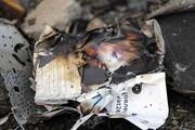 واکنش سوئد و آلمان به سقوط هواپیما | تهران پیامدهای درست در ارزیابی این فاجعه هراسانگیز را ترسیم کند