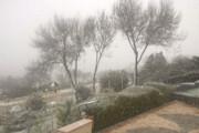 فیلم | بارش نخستین برف زمستانی در شهر یزد